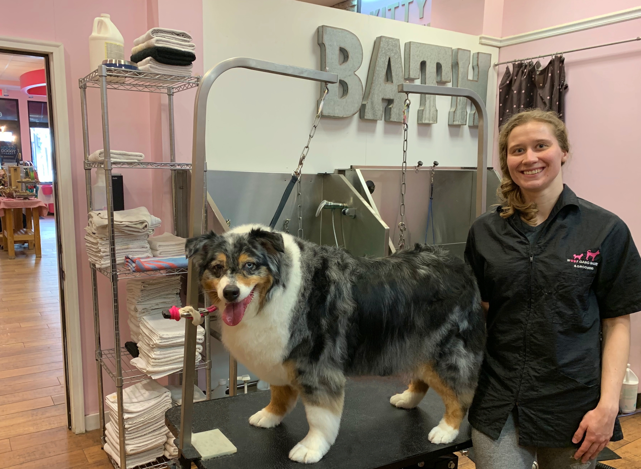 Woof Gang Groomer with a fluffy dog before his haircut
